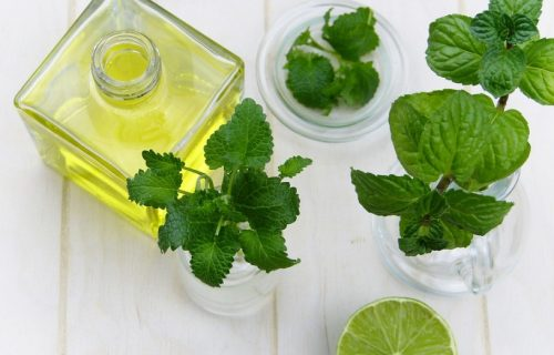 lemon mint infused oil
